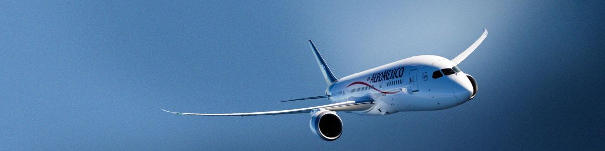 1cd523b0596ce Aeroméxico Boleto Premio. En Club Premier queremos que vivas las mejores  experiencias
